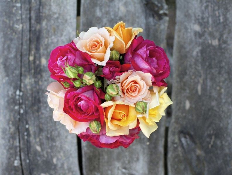 Частные флористические курсы