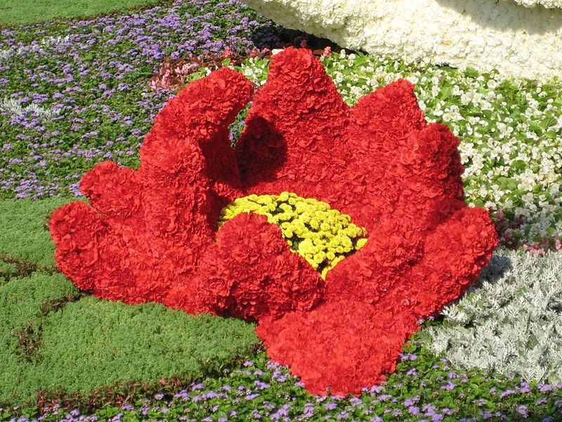 individualnye-floristicheskie-kursy-na-domu_2.jpg